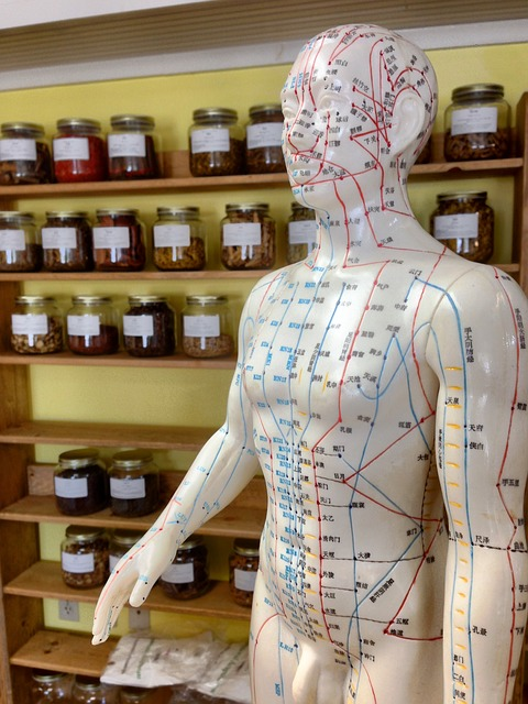 Exploring the Promise of Traditional Chinese Medicine
